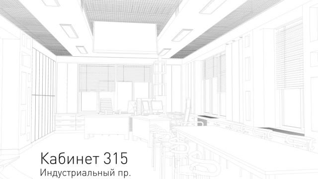 Сabinet №315